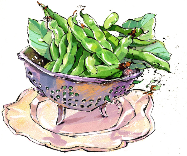 Colander of fresh fava beans and leaves on a decorative plate