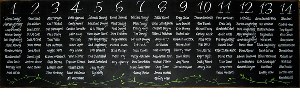 Wedding Seating Chart Chalkboard. 5' x 1.5'